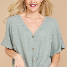 https://www.reddressboutique.com/products/ready-for-spring-mint-top